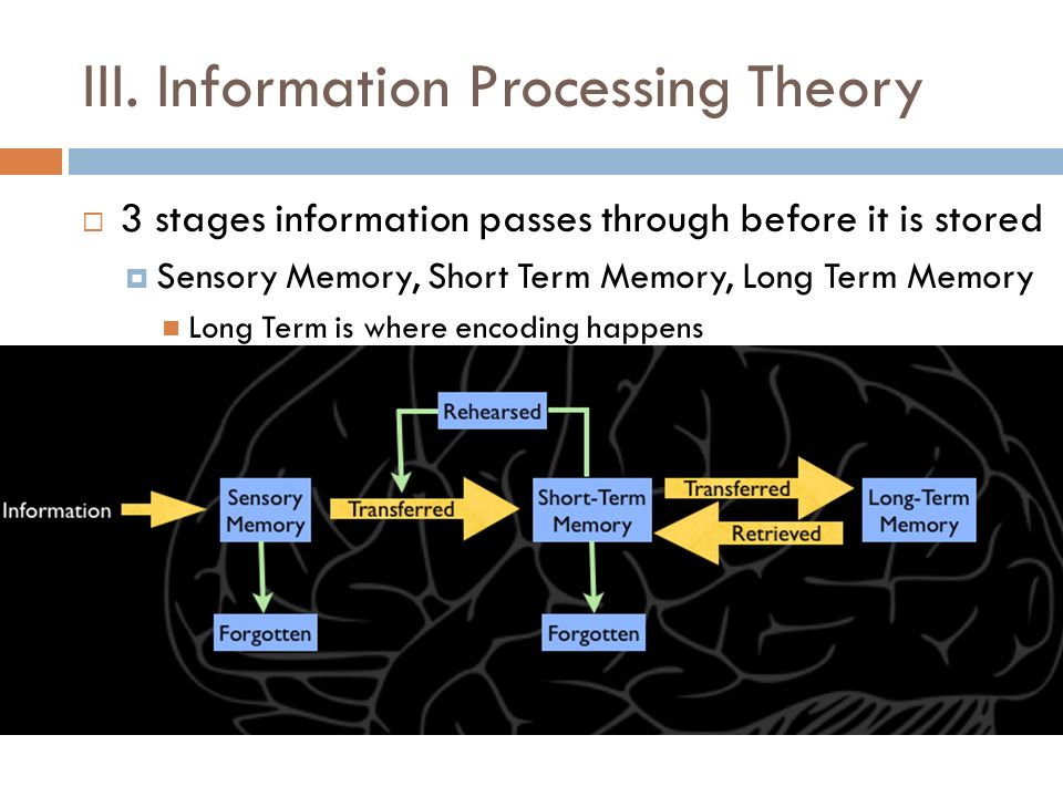 III. Information Processing Theory
