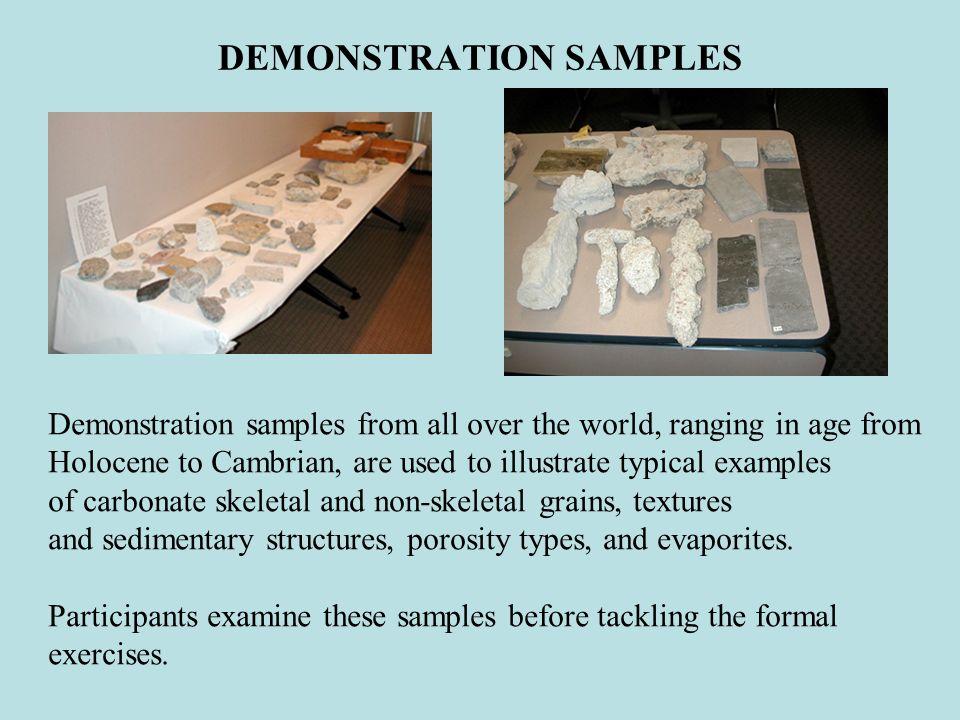 DEMONSTRATION SAMPLES