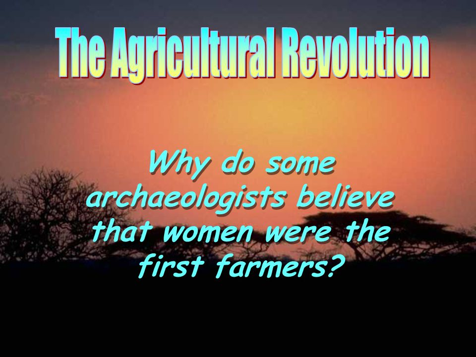 Why do some archaeologists believe that women were the first farmers