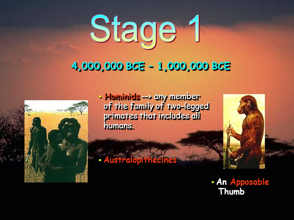 Stage 1 4,000,000 BCE – 1,000,000 BCE. Hominids --> any member of the family of two-legged primates that includes all humans.