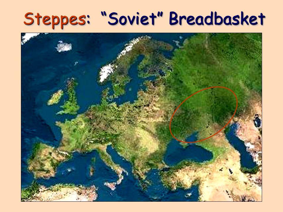 Steppes: Soviet Breadbasket