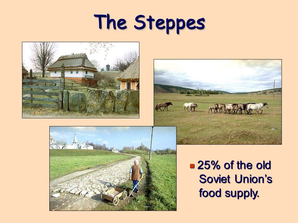 The Steppes 25% of the old Soviet Union's food supply.