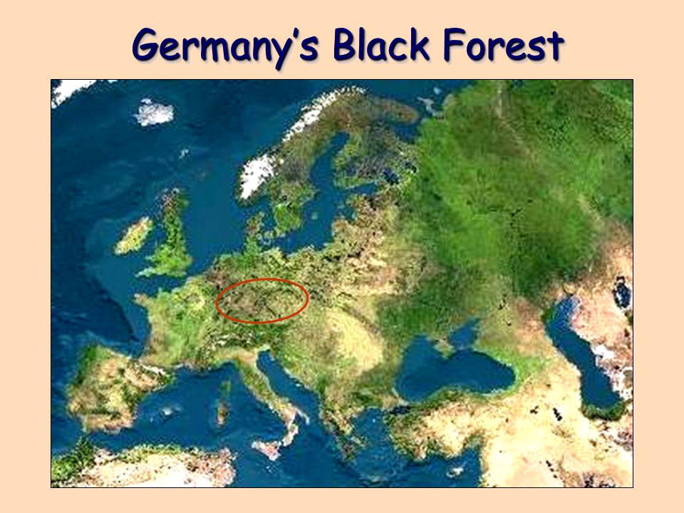 Germany's Black Forest