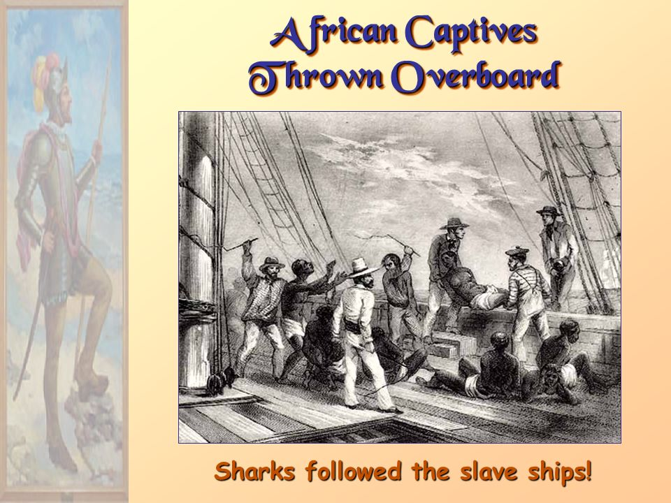 African Captives Thrown Overboard Sharks followed the slave ships!