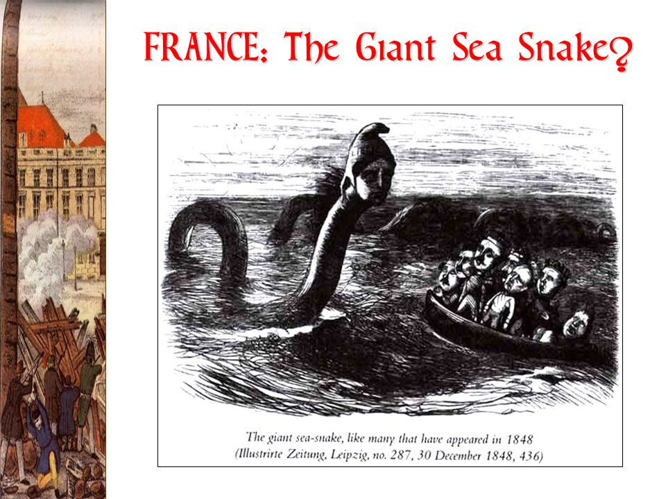 FRANCE: The Giant Sea Snake
