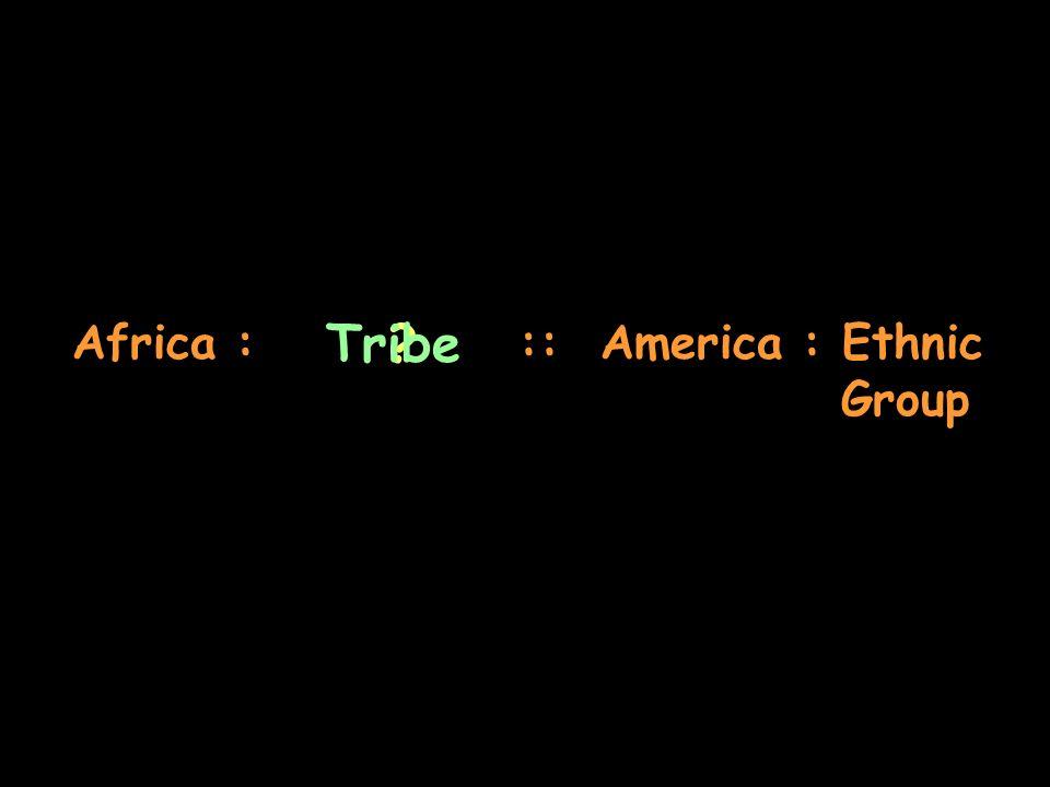 Africa : :: America : Ethnic Group