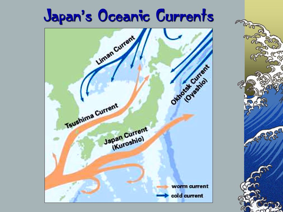 Japan's Oceanic Currents