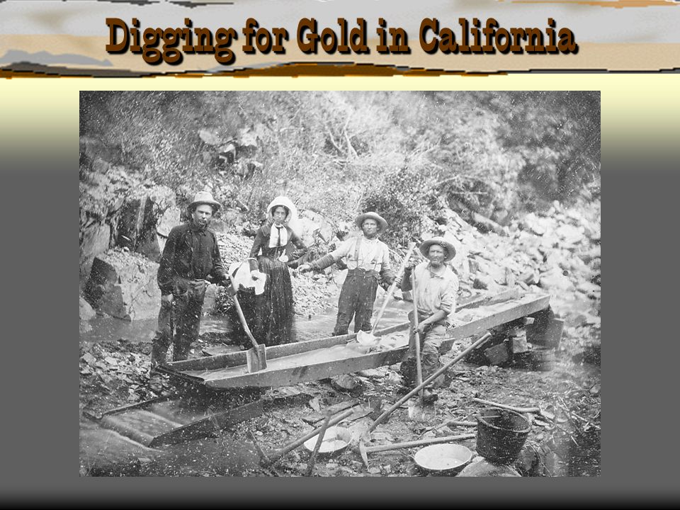 Digging for Gold in California