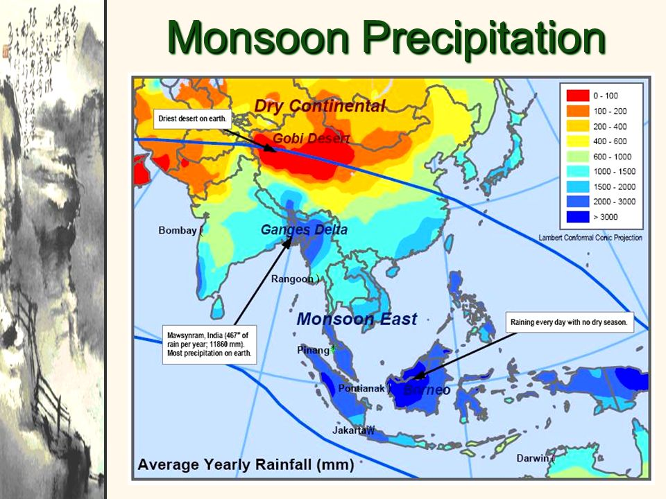 Monsoon Precipitation Patterns