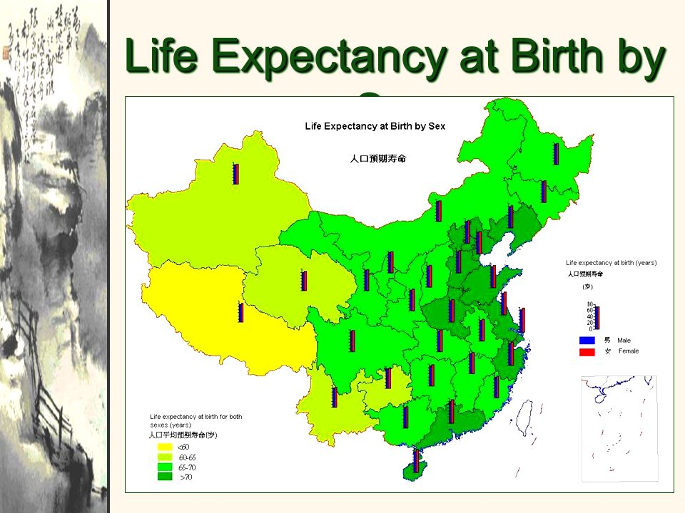 Life Expectancy at Birth by Sex