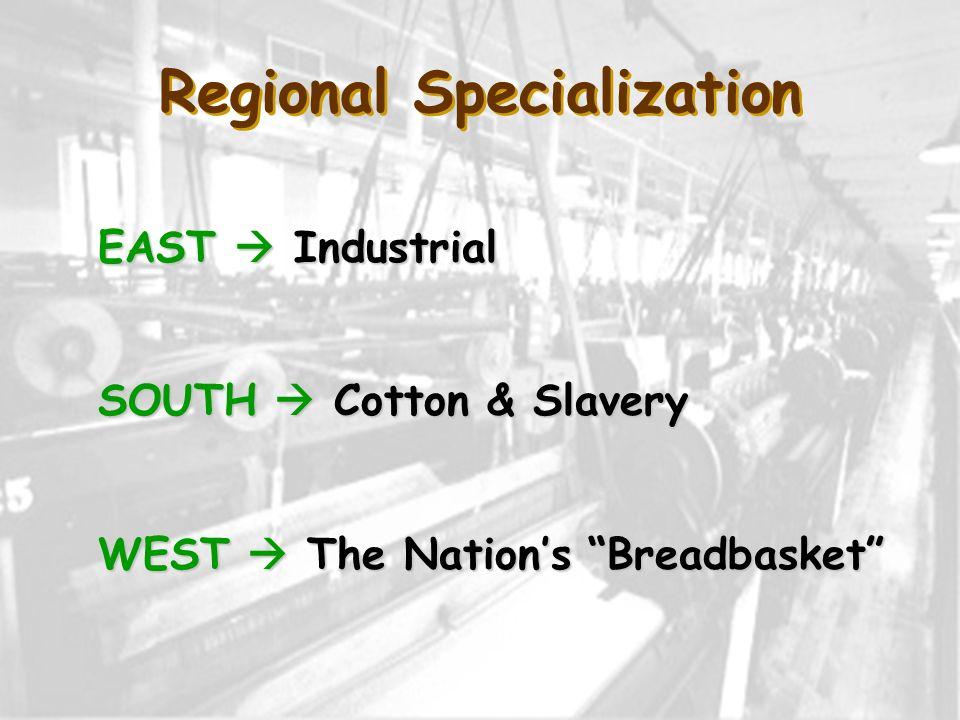 Regional Specialization