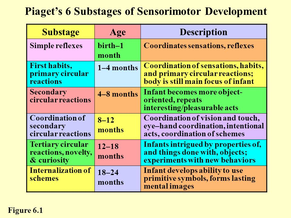 Cognitive development in infancy ppt video online download for Stages of motor development
