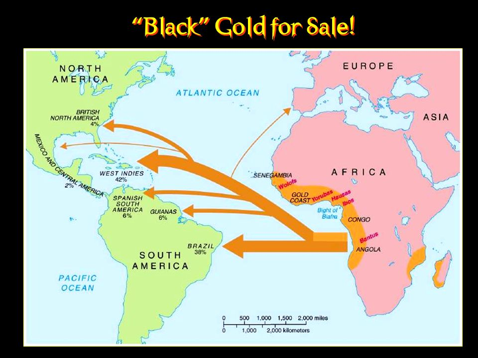 Black Gold for Sale!