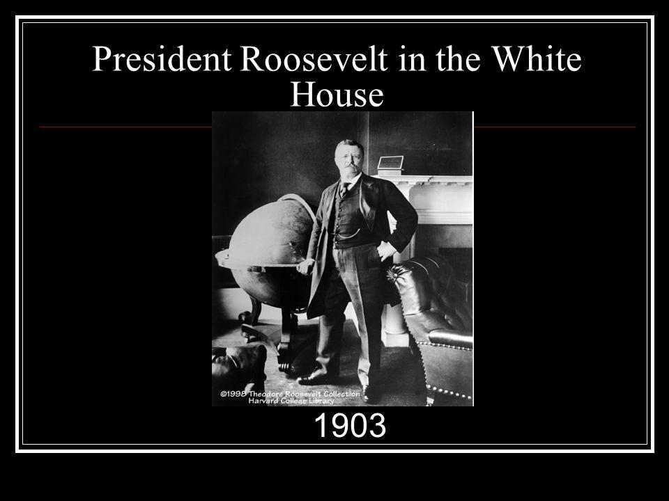 President Roosevelt in the White House