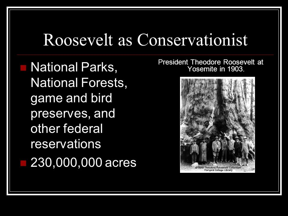 Roosevelt as Conservationist