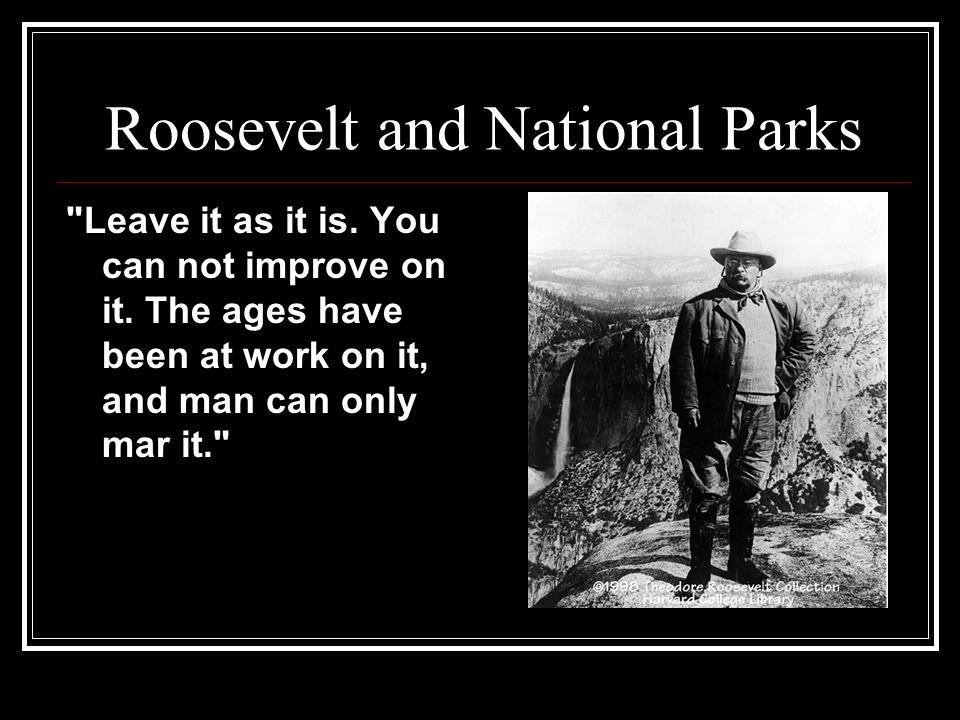 Roosevelt and National Parks