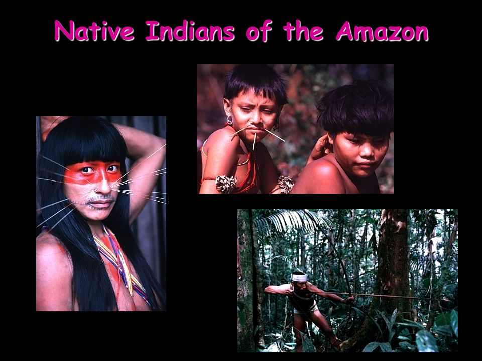 Native Indians of the Amazon