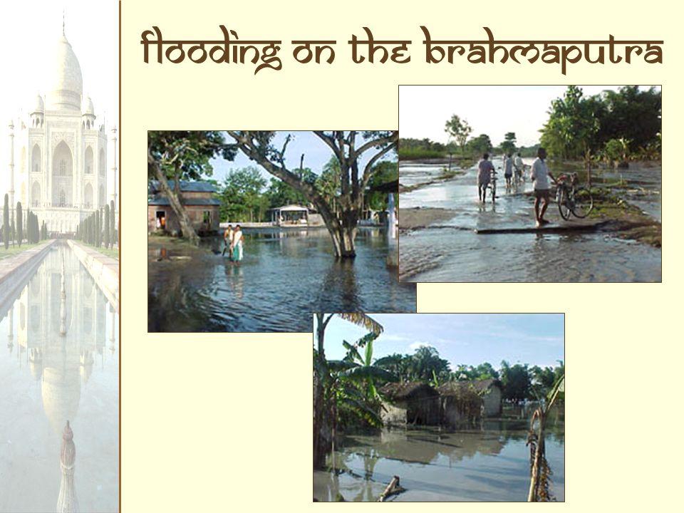 Flooding on the Brahmaputra