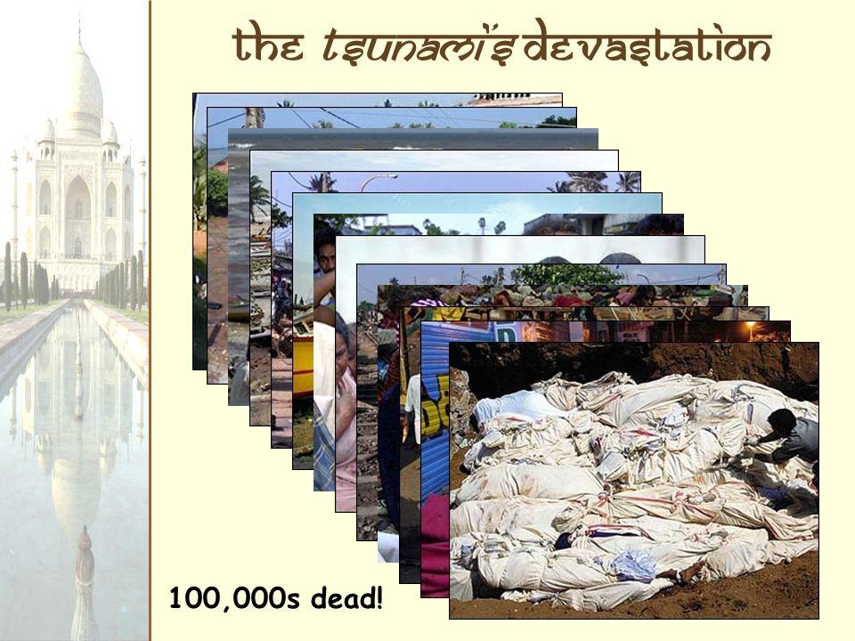 the Tsunami's Devastation