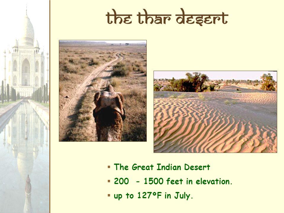 The Thar Desert The Great Indian Desert 200 - 1500 feet in elevation.