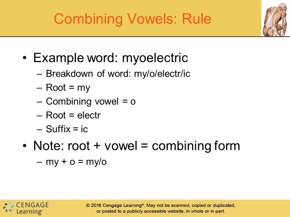 CHAPTER 1 Word Building Rules. - ppt video online download