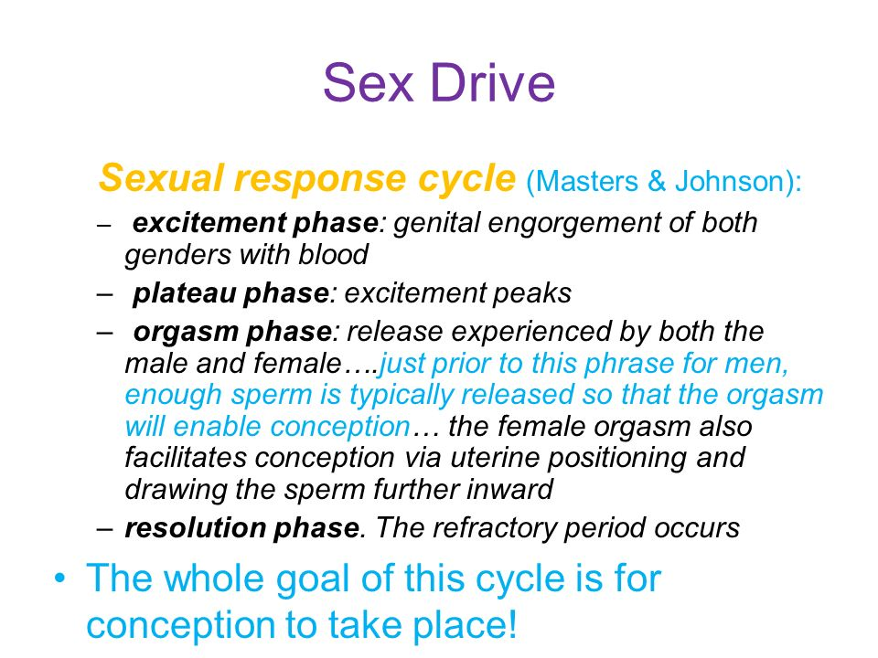 Masters And Johnson Sexual Response Cycle