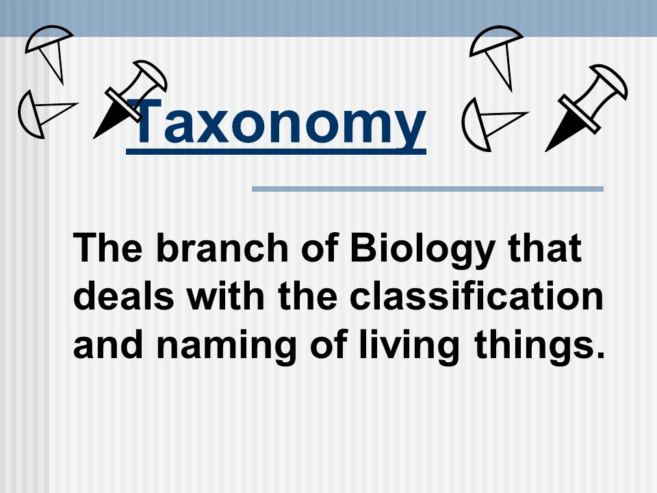 Field of biology that deals with classifying organisms
