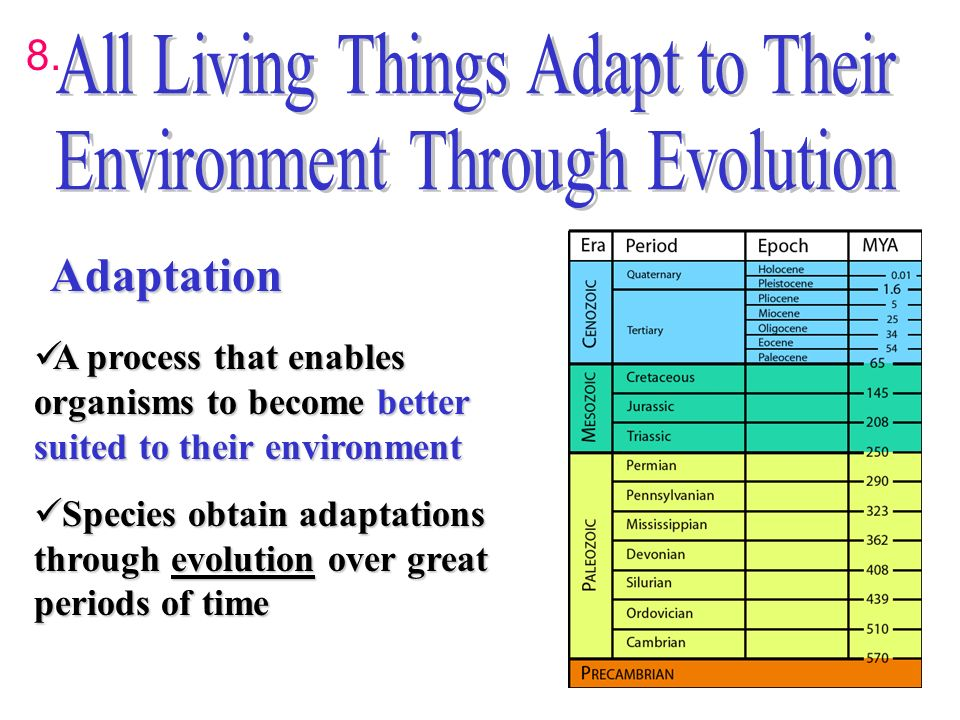 how has the organism evolved physiologically to become suited to its environment Explain how the organism has evolved physiologically to become suited to its environment explain how things would change if the organism were to be transplanted to a significantly different environment.