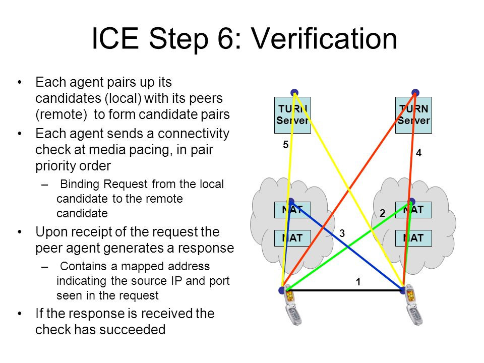 ICE Step 6: Verification