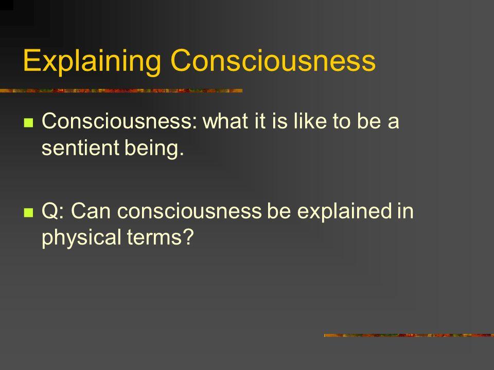 Explaining Consciousness