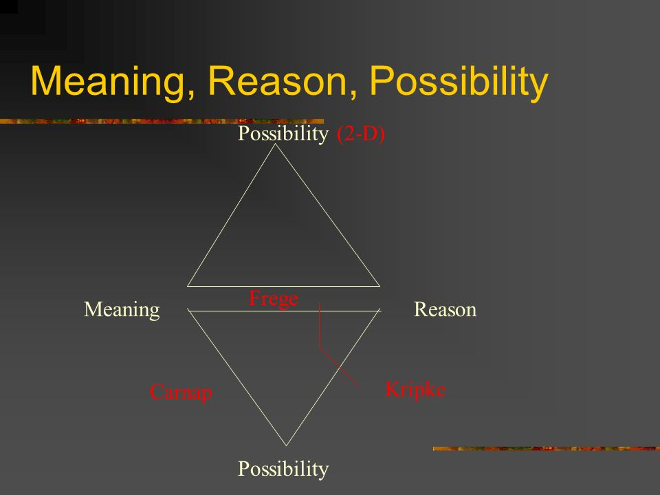 Meaning, Reason, Possibility