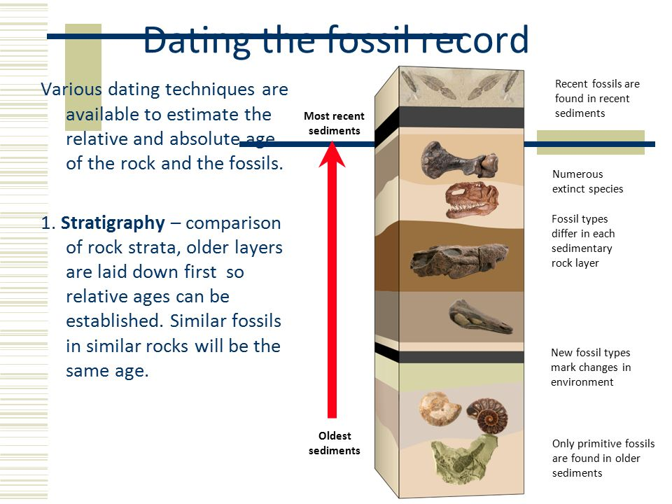 Different fossil dating techniques for fossils