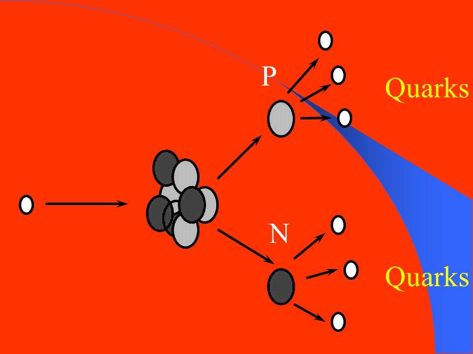 P Quarks N Quarks