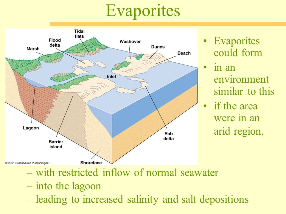 Sedimentary Rocks— The Archives of Earth History - ppt video ...