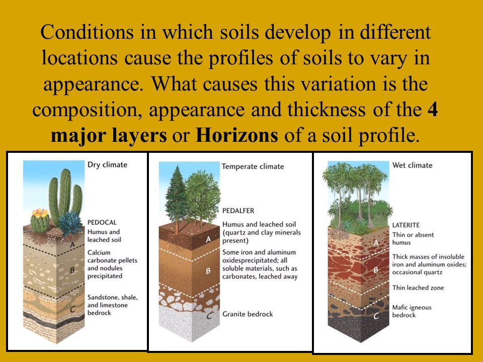 Weathering is the breakup of rock due to exposure to for Why are soils different