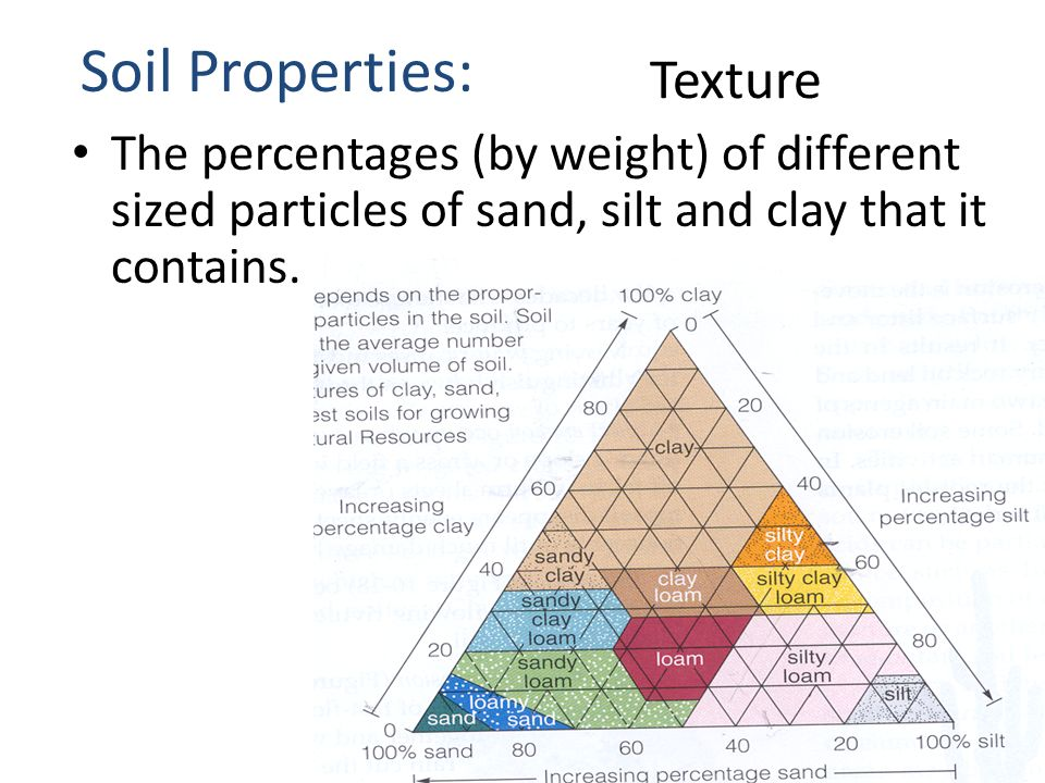 Soil agriculture ppt video online download for What soil contains