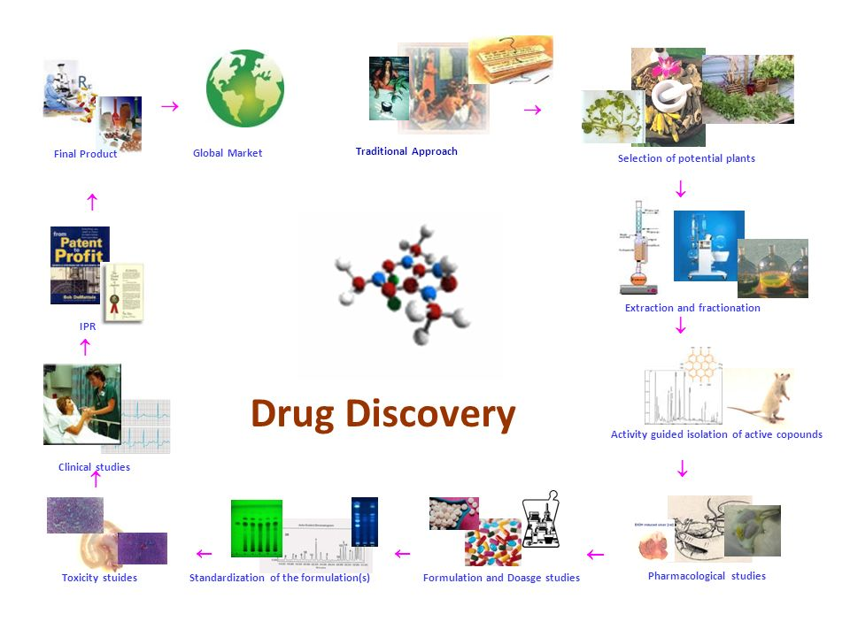 Drug Discovery  Traditional Approach Selection of potential plants