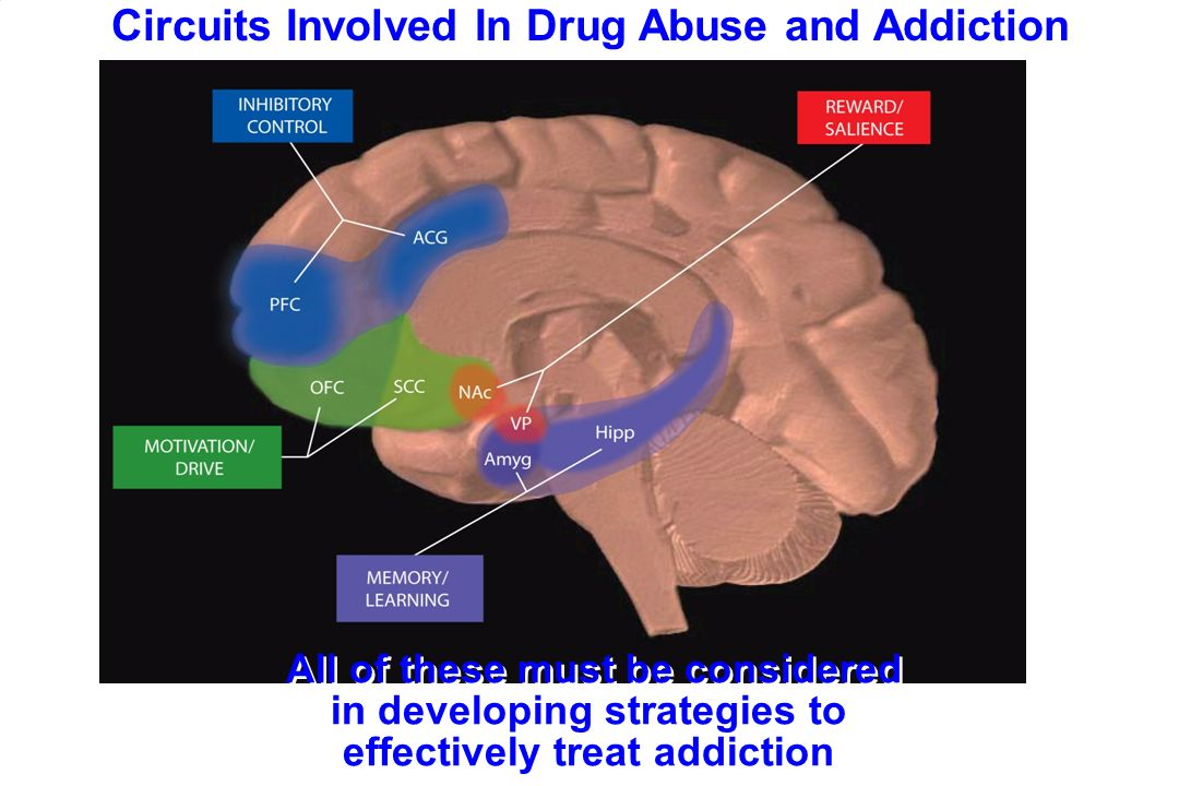 Pharmacologic Treatment of Addiction - ppt download
