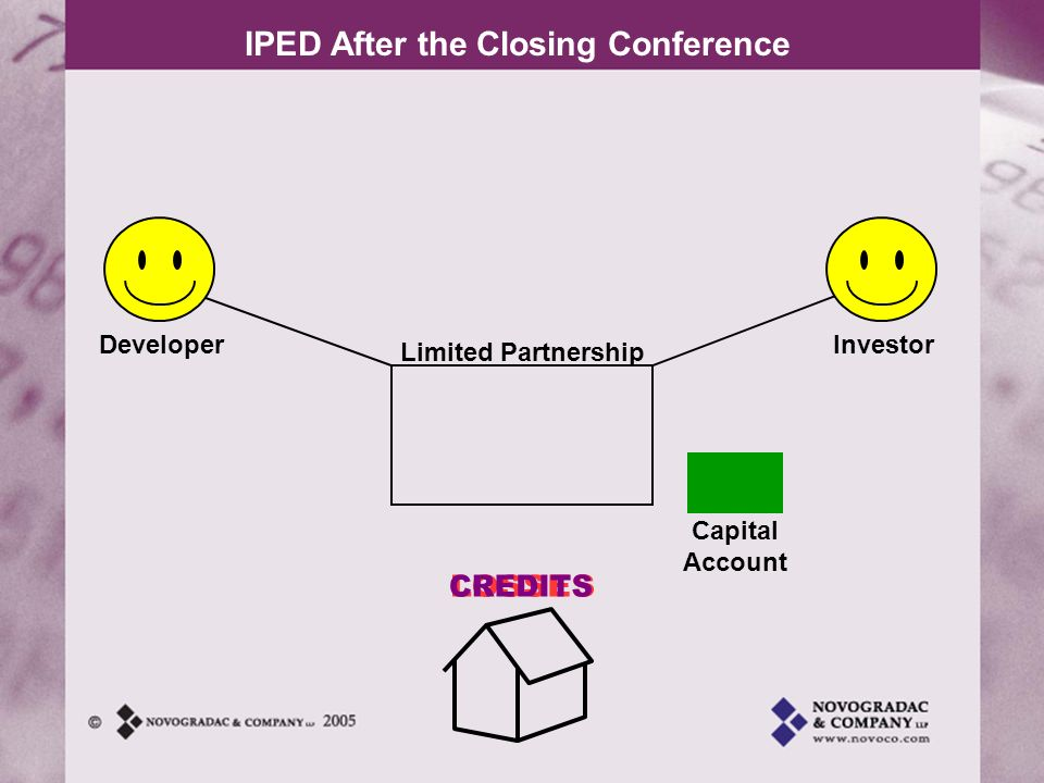 Developer Investor Limited Partnership Capital Account CREDITS LOSSES