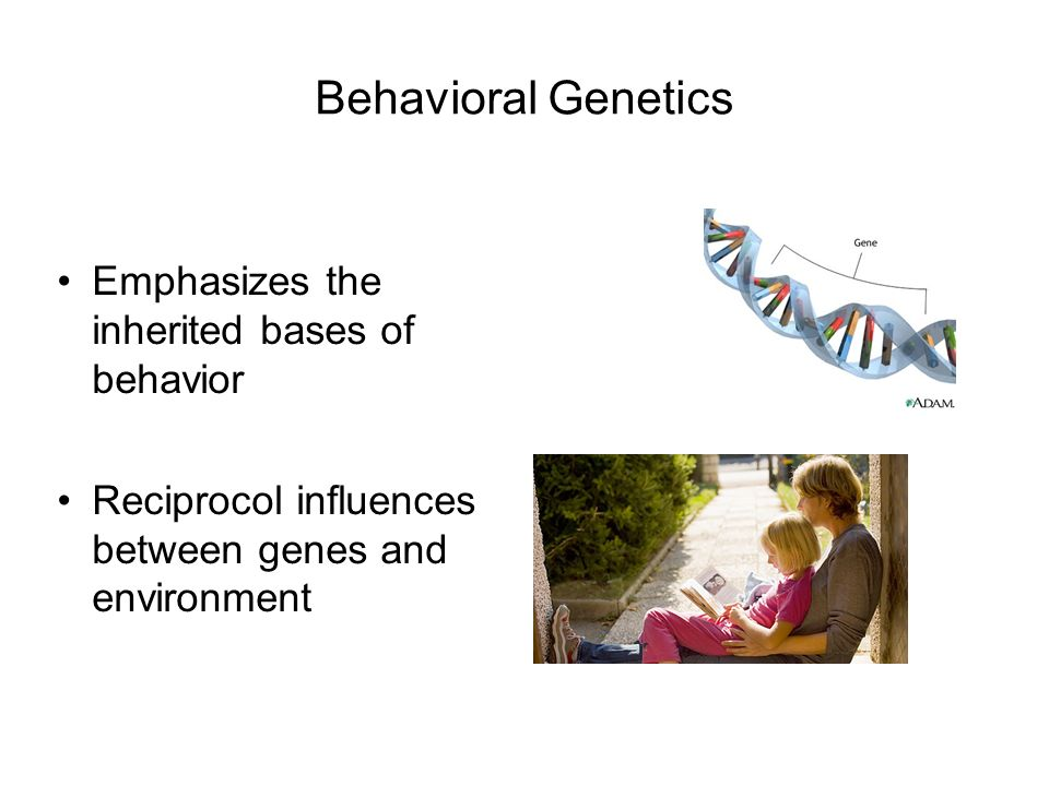 behavioral genetics Behavioral genetics ernst mayr, a leading figure in twentieth century evolutionary thought, saw behavior as a continuum ranging from completely closed, or fixed by the genotype, to completely open, extremely flexible and dependent on the environment.