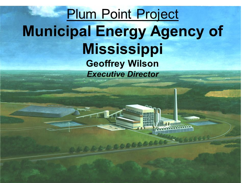 Plum Point Project Municipal Energy Agency of Mississippi Geoffrey Wilson Executive Director
