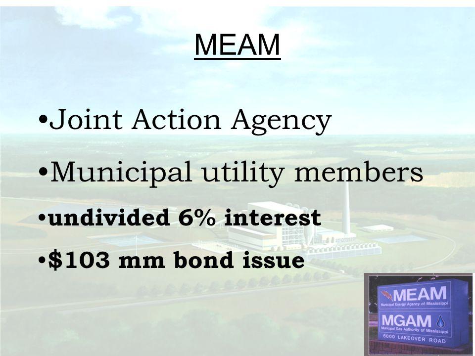 Municipal utility members