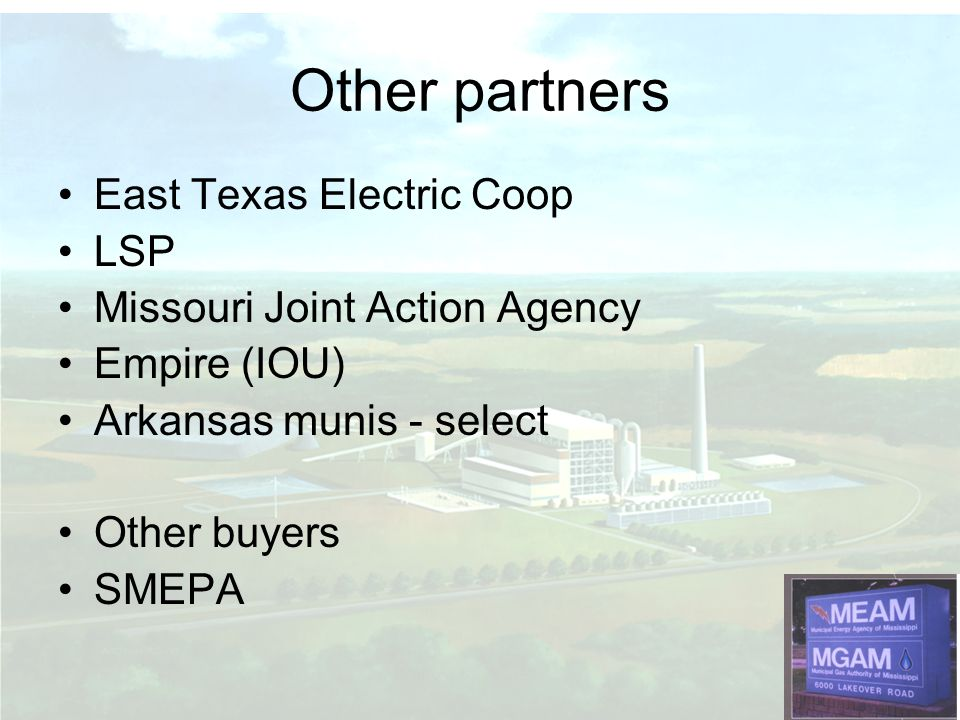 Other partners East Texas Electric Coop LSP