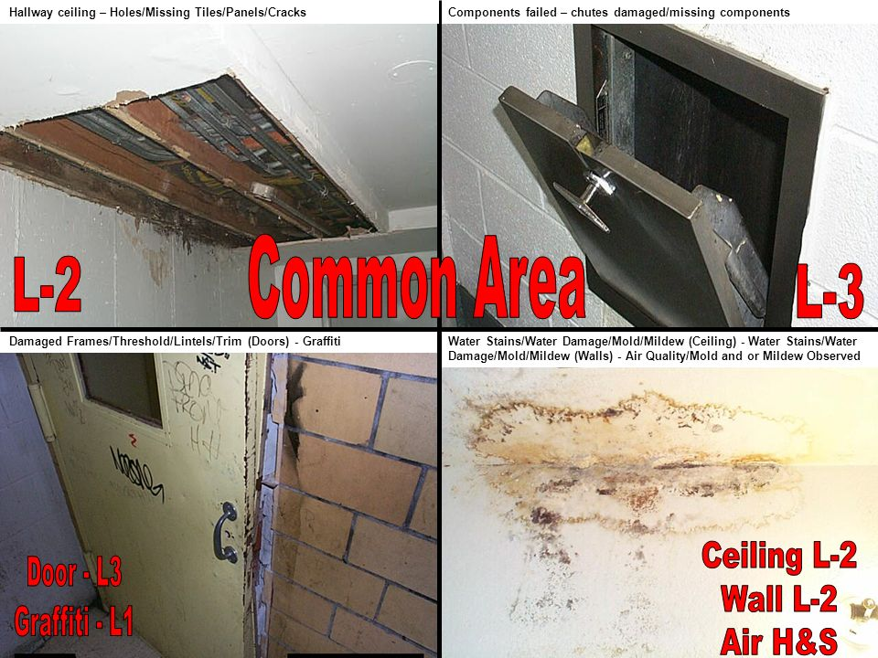 Common Area L-2 L-3 Ceiling L-2 Door - L3 Wall L-2 Graffiti - L1