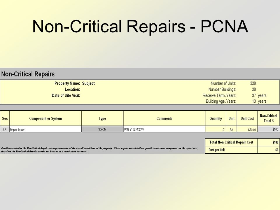 Non-Critical Repairs - PCNA