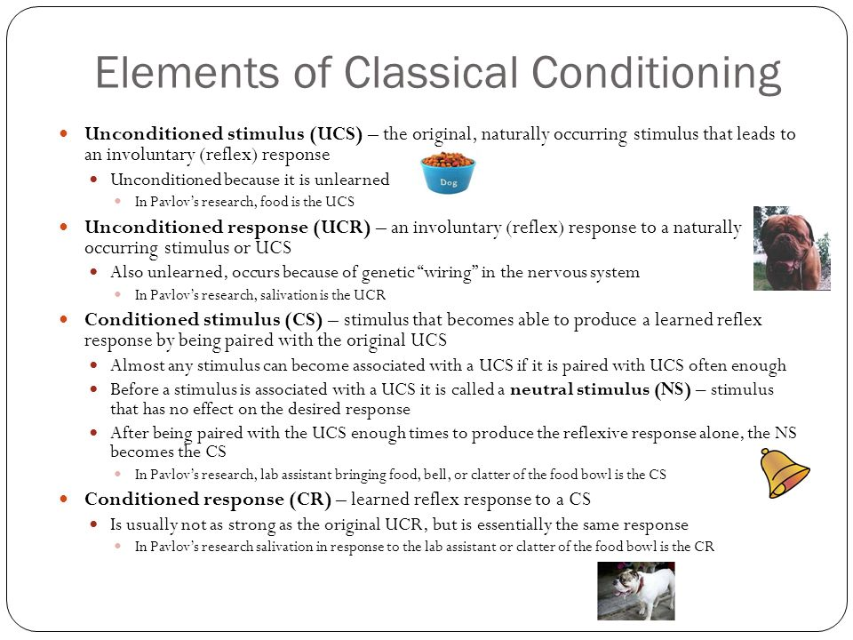 research essay elements of classic conditioning essay We will write a custom essay sample on little albert  i don't think any research is worth risking a person's health  research essay: elements of classic .