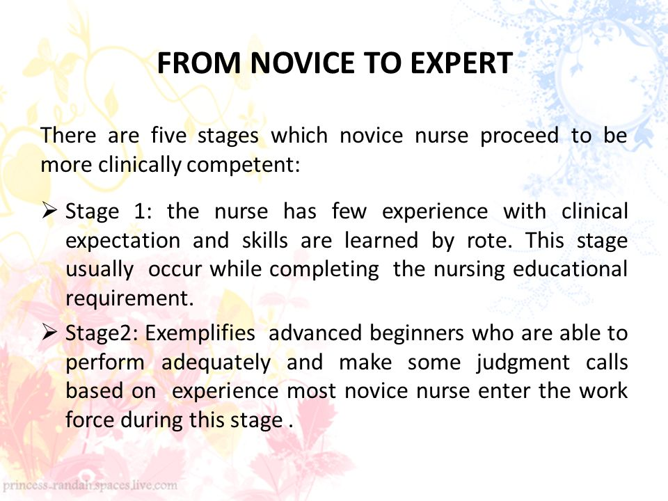 Novice To Expert Stages