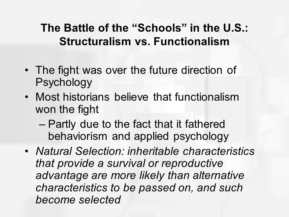 structuralism vs functionalism essay Free essay: compare and contrast structuralism and  functionalism in my opinion both of the theories structuralism and.