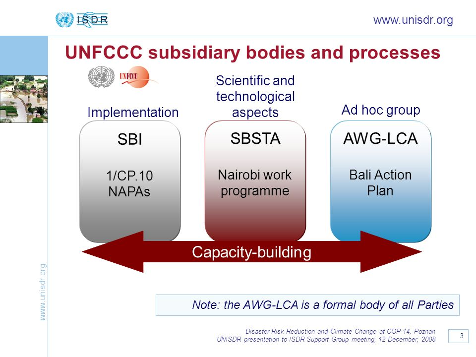 UNFCCC subsidiary bodies and processes