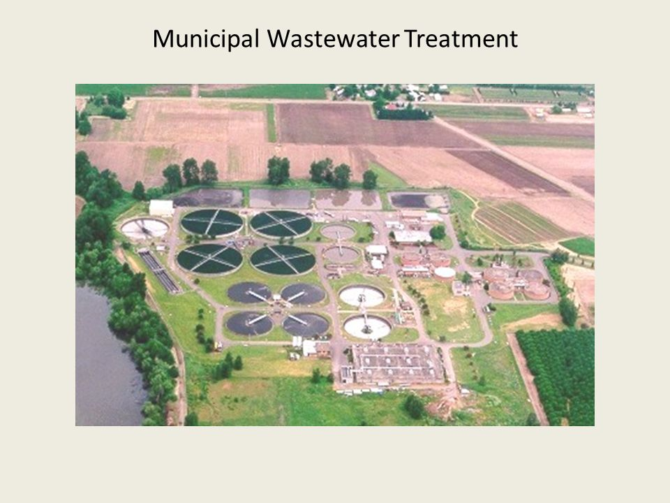treatment of water pollution pdf